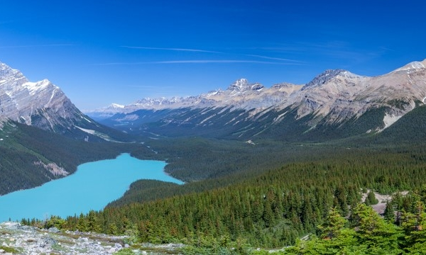 10 Peyto Lake by Ossie Bruce
